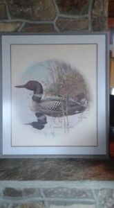 Large framed loon print