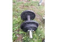lots of weights and bench