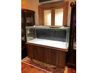 5 FOOT LARGE AQUARIUM FISH TANK WITH STAND AND HOOD