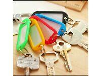 30 Plastic Key Tags Free Shipping