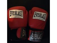 Adult boxing gloves great condition