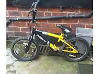 Mountain kids bike
