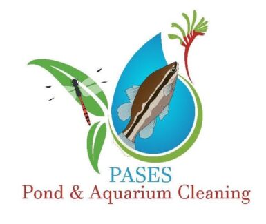 Fish gumtree australia free local classifieds for Koi pond maintenance near me
