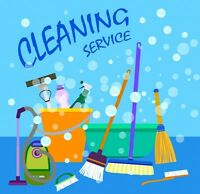 house and commercial cleaners