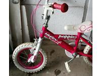 Kids 12' bike