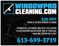 Window Cleaning!