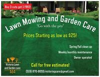 Lawn Mowing and garden care