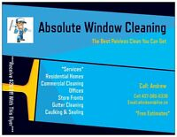 Absolute widnow cleaning & eaves cleaning