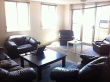 Female bedroom to share in quiet apartment next to MelbUni & City Carlton Melbourne City Preview