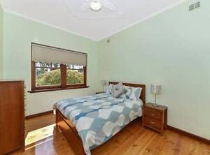 Student Accommodation Plympton Park Marion Area Preview