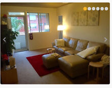 Unfurnished queen/double room available in furnished flat in Enmore. Enmore 2042 Marrickville Area Preview