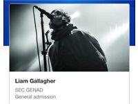 Liam Gallagher Ticket x 1 Knebworth