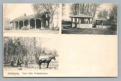 "Jonkoping ""Vyer Fran Vesterbrunn"" Sweden Farming Scenes Antique Postcard 1900s"