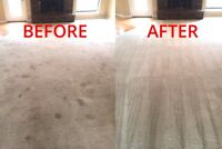 A1 Expert Carpet Steam Cleaning Services