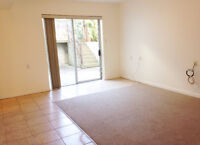 1 Bedroom Above Ground Suit Located in Hasting-Sunrise Waterfrnt