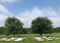 Benches for your outdoor wedding