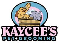 Experienced Groomer Wanted