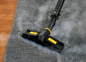 Professional steam cleaning