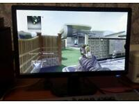 Acer monitor 19 inch bargain