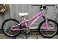 Girls specialized hotrock mountain bike