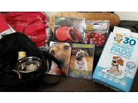 Puppy dog accessories bundle