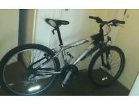 Reebok 23 inch wheels mountain bike