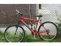 Mens adult mountain bike 21 speed