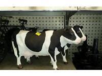 Cast iron cow ornaments