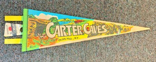 Vintage Carter Caves Souvenir Felt Pennant Olive Hills Kentucky Travel Trip Fun