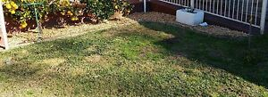 hand weeding and mulching services Bangor Sutherland Area Preview