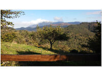 Dream house/business for sale in paradise. Asturias. Spain