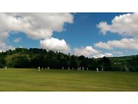 Friendly Cricketers Needed in Henley Sat 23rd Jul