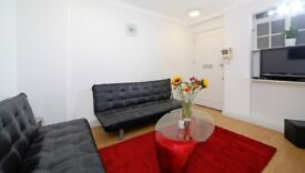 Modern Two Double Bedroom Flat - Marble Arch - Porter