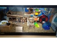Large perfecto vivarium/tank suitable for reptiles or rodents