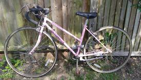 Vintage Ladies Schwinn Caliente racing bike