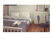 Spacious double bedroom to rent short term till june 2018