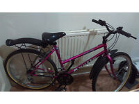 "20"" ladies mountain bike"