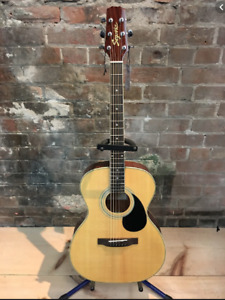 LOOKING to buy a Segovia F07G-N beginner acoustic guitar