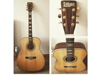 Saigon DR 100 Acoustic Guitar with hard case and stand