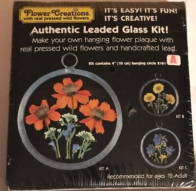 Own Plaque Kit (AUTHENTIC LEADED GLASS  KIT Make your own hanging flowers plaque )