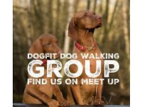 Dog Walking Group - Poole / Bournemouth/ New Forest
