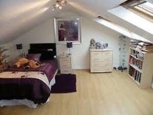 Bachelor  Apartment for Rent Good Neighbourhood Near lake  $600