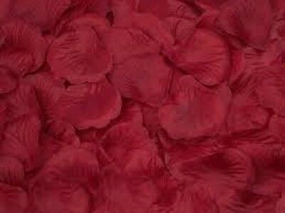 SILK ROSE PETALS  IDEAL FOR  ENGAGEMENT ~ WEDDING ~ BIRTHDAY ~ CELEBRATIONS