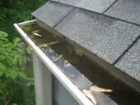 Spring Eaves Cleaning Services