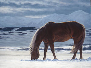 """Limited Edition print - """"Winter's Sky"""""""
