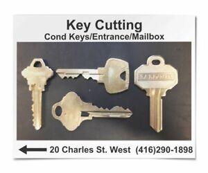 Fob Copy / Key Cutting