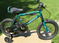 kids bike with 14 inch tires
