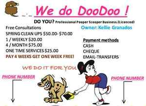 Professional Pooper Scooper Business Licensed