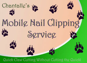 Chantalle's Mobile Nail Clipping Services