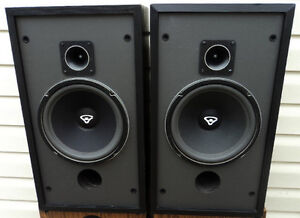 SPEAKER REPAIR / RE-FOAMING: Don't Toss Those Old Beauties Kitchener / Waterloo Kitchener Area image 2